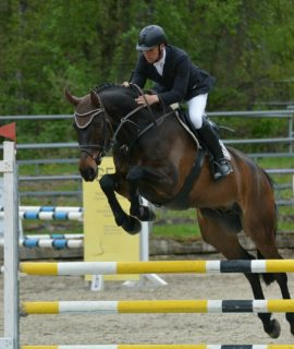 Equitation jumper